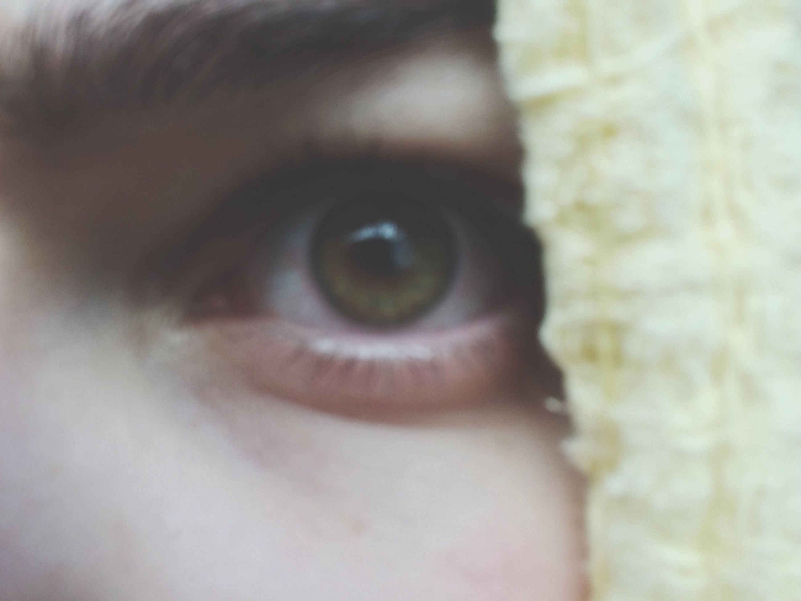 human eye, close-up, looking at camera, eyesight, selective focus, full frame, extreme close-up, focus on foreground, human face, eyelash, eyeball, looking, human skin, iris - eye