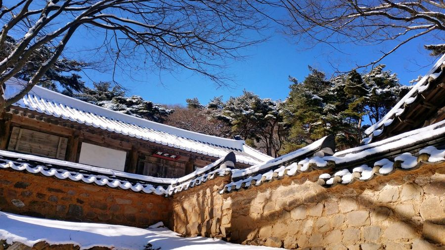 Korean Traditional Architecture SnowTradional Fence Winter Cold Temperature Tree No People Nature Sky Built Structure Outdoors Day Beauty In Nature Architecture Snowing Mountain