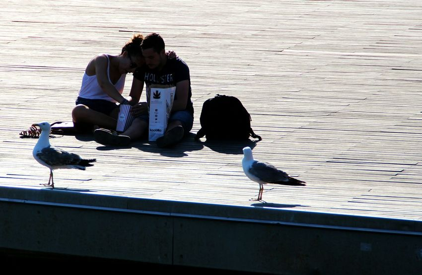 Love Barcelona BCNfoto Portvellbarcelona Sunny Day Love Couple Cuteness Chilling Street Photography Silhouettes Hanging Out Enjoying Life CanonEOS650D Canonphotography Eyem Gallery EyeEmBestPics Creative Light And Shadow People Photography Seagulls In The City