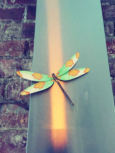 Dragonfly Art And Craft Lucky Dragon Brick Wall Brick Work Brick And Mortar My Kitchen Extractor Fan Cooking Dinner Sunday Afternoon Lazy Sunday