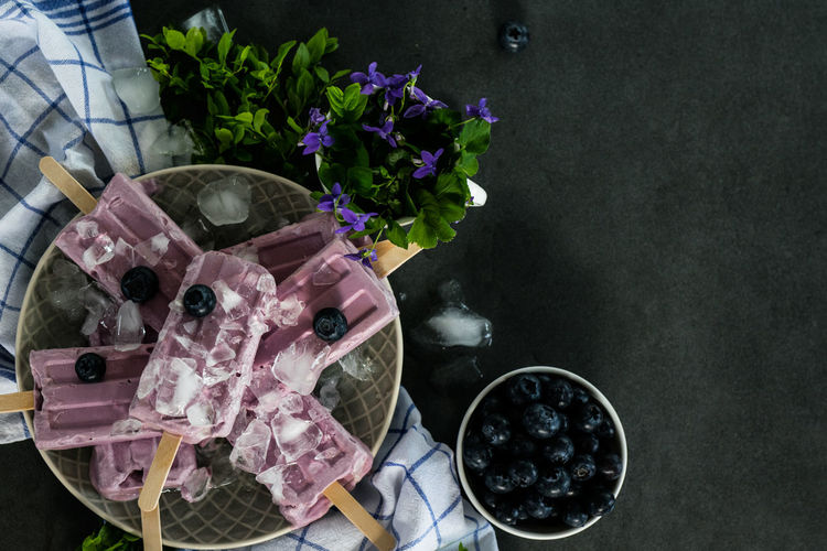 Homemade blueberry ice cream popsicles on dark kitchen countertop Dark Dessert Freshness Frozen Homemade Pink Snack Blueberry Calories Clean Eating Cold Countertop Food Fruit Berry Tree Healthy Ice Cream Nutrition Organic Paleo Popsicle Purple Summer Sweet Tabletop Vegan
