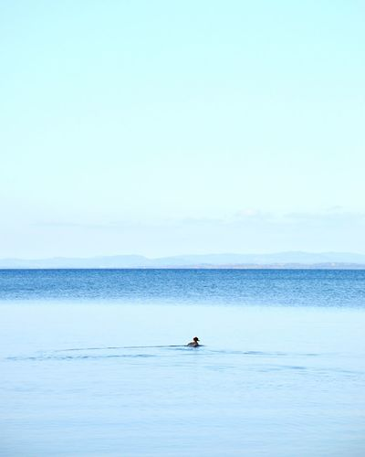 Water Sea Sky Beauty In Nature Scenics - Nature Horizon Real People Horizon Over Water Copy Space Waterfront Tranquility Tranquil Scene Lifestyles Leisure Activity Day Clear Sky Nature One Person Men Outdoors
