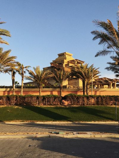 Dubai Jumera Beach Jumeriah Palm Beach Ontheway UAE UAE , Dubai Architecture Beauty In Nature Blue Building Exterior Built Structure Clear Sky Day Growth Jumeirah Nature No People Ontheroad Outdoors Palm Tree Sky Travel Destinations Tree