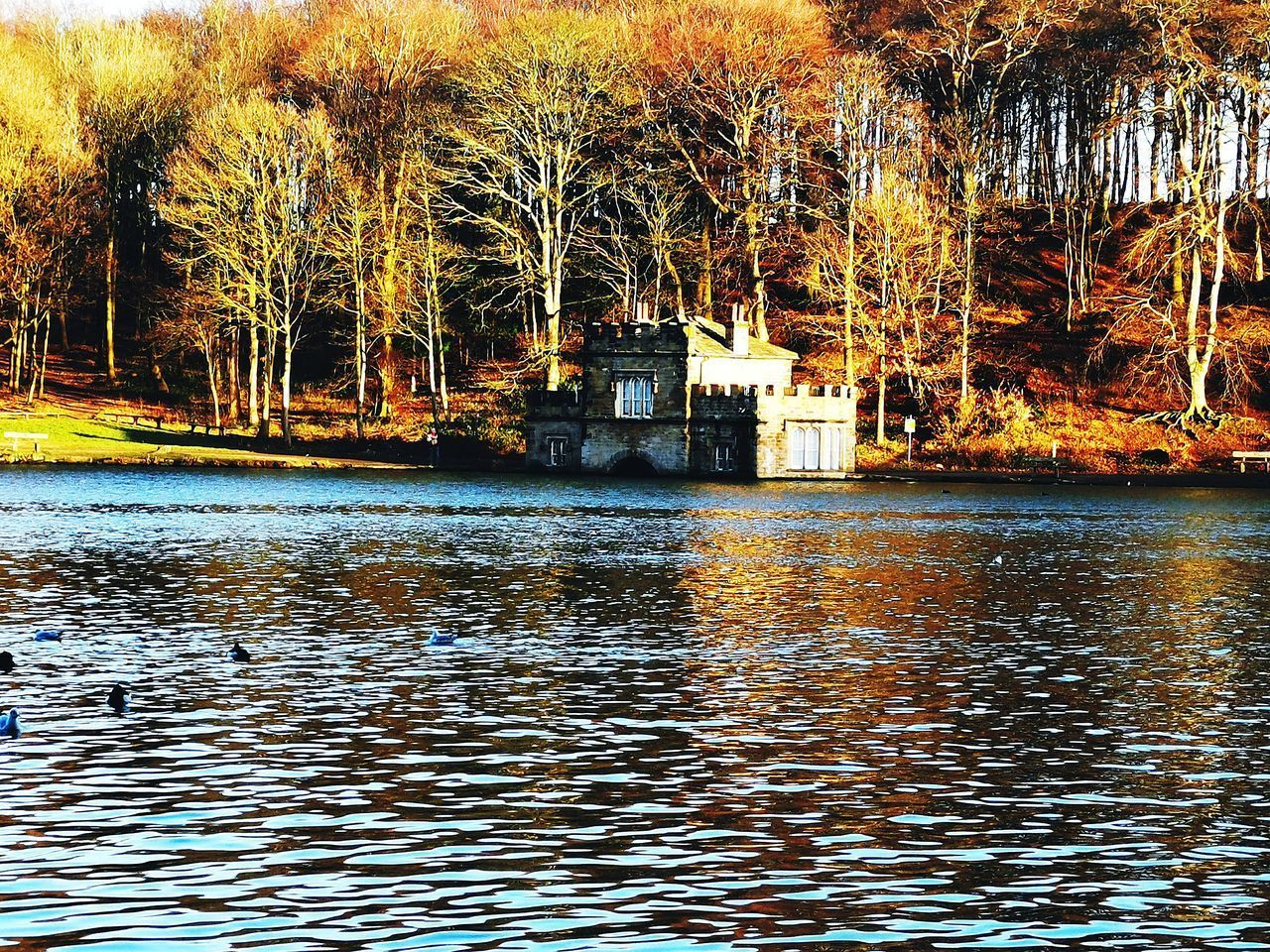 SCENIC VIEW OF LAKE AGAINST BUILDING
