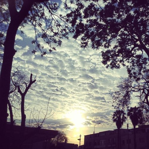 Beautiful Sunrise Clouds And Sky Going To Class