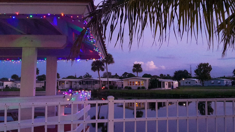 Poolside with Palms and Christmas Lights. Hot Tub and Cold Beverages. Christmas In Vero Vero Beach Enjoying Life It Doesn't Get Any Better Than This 32966