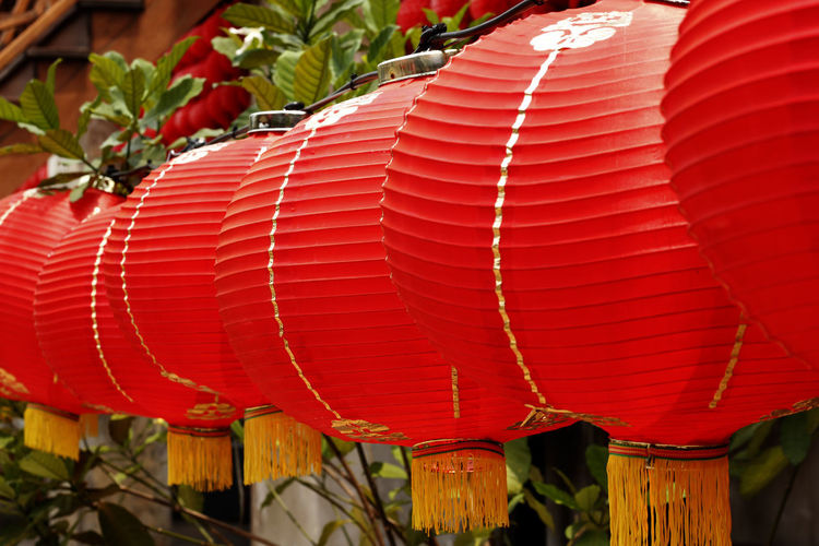 Red Lantern in Chinese style. Red Lantern For The Chinese New Year Chinese Lantern Close-up Day Decoration Focus On Foreground Hanging In A Row Lantern Lighting Equipment Nature No People Outdoors Pattern Plant Red Red Lantern Red Lantern Hot Pepper Red Lanterns Red Lanterns China Repetition