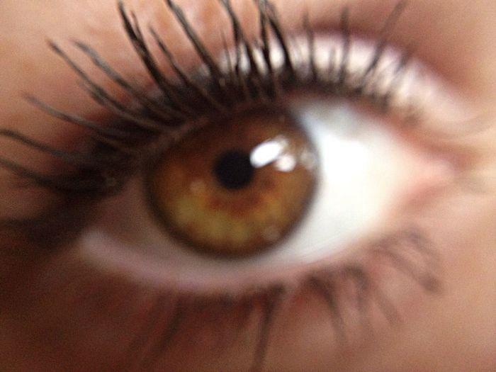 Extreme close up of eye