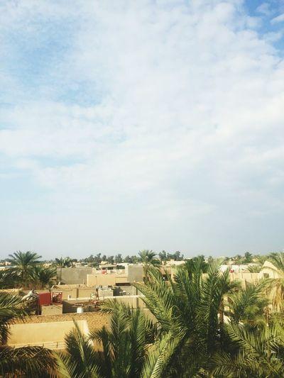 بغداد_العامرية 😚