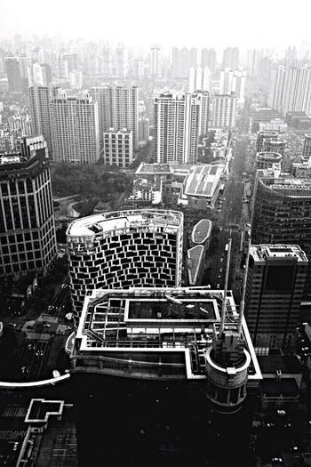 Urban Forest City Cityscapes Cityscape Landscape Architecture Architecture_bw Shanghai Blackandwhite Black And White