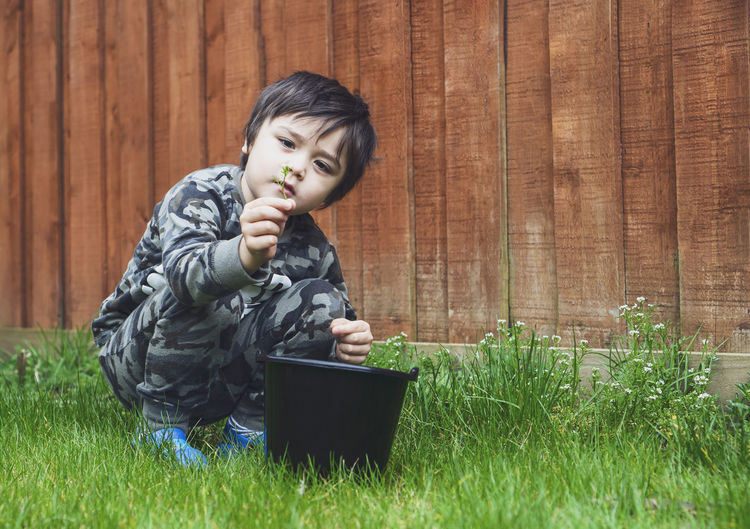 Boy picking flowers on grassy land in yard