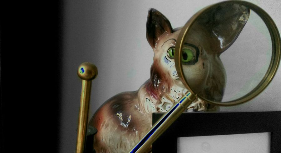 Cat Statue Surreal Surrealism Magnifying Glass Coloursplash Colorsplash