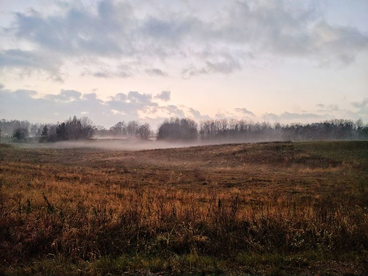 November mood 11.2017 Autumn Mazuria Quiet Nature Fog November Field Poland Peaceful Perspectives On Nature