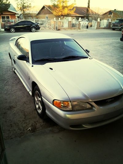 after a year with my baybee boi of course i couldn't say goodbye :') still strong <3 LOL