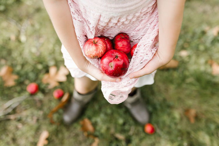 Low Section Of Girl Holding Apples While Standing On Field