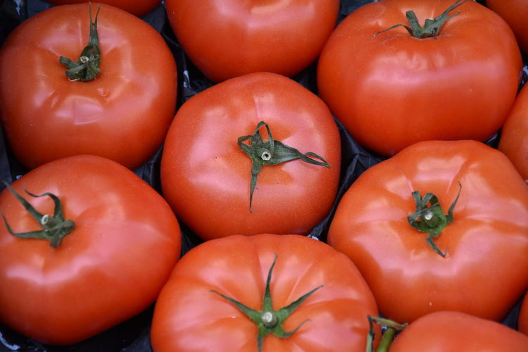 High angle view of tomatoes for sale in market