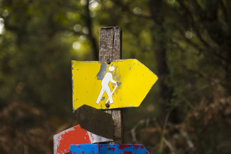 Hiking sign in the forest, close up Yellow Nature Outdoors Guidance Direction Forest Symbol Arrow Sign Hike Hiking Trekking Backpacker Explore Marking Sign Woods Path Pathway Tree Wooden Post Footpath Trail Hiker Indication Orientation