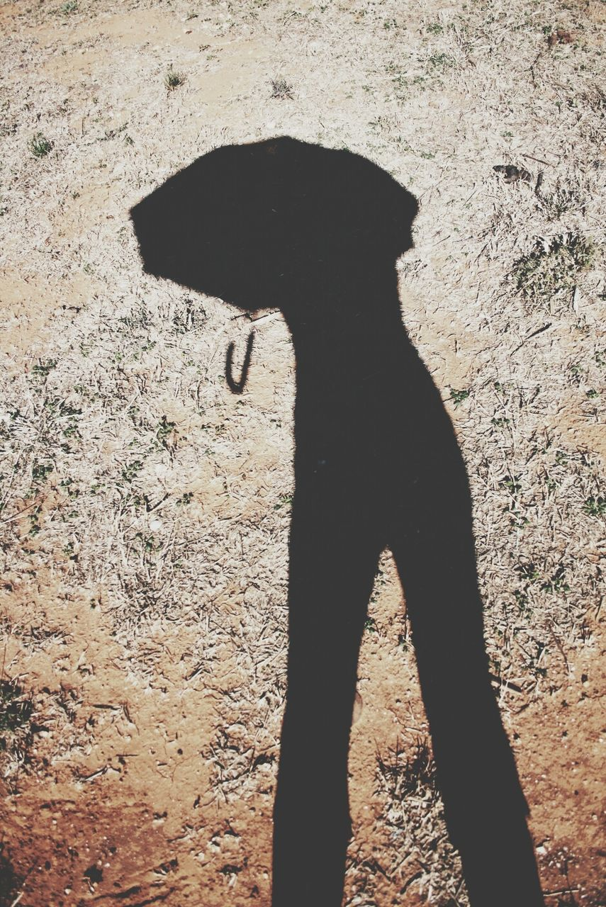 Shadow Of Person With Umbrella On Sunny Day