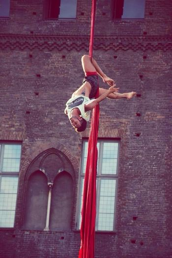 Aerial kontest Aerialsilk Aerialsilks #aerialist #circus Telas #tessuti Tessutiaerei