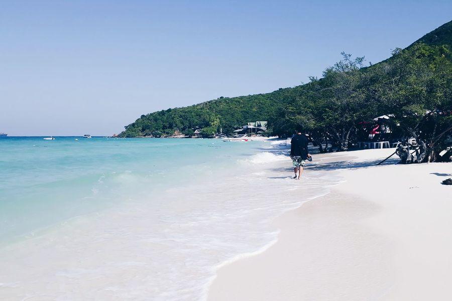 Water Tree Clear Sky Sea Beach Full Length Sand Blue Summer Sunny Island