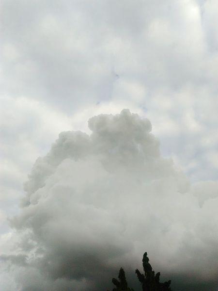 Rain clouds Sky Rain Clouds Cloud Nature Day Low Angle View Nature Weather Si Racha Thailand Showcase : June