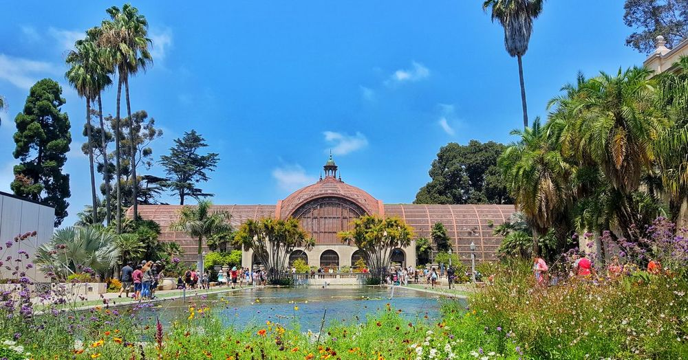 Botanical Garden Lily Pond Balboa Park San Diego California SoCal Architecture Travel Destinations Cloud - Sky Tree Flower Building Exterior Built Structure Outdoors Flowerbed Water EyeEm Best Shots EyeEmBestPics Beauty In Ordinary Things Tranquility Eyem Best Shots First Eyeem Photo PhonePhotography EyeEm Gallery EyeEm Selects