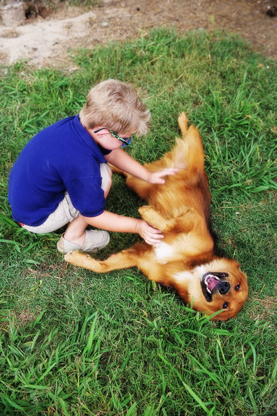 Pet Portraits Childhood Happy Dogs Looking At Camera Child Boys Best Friend Check This Out People Outdoors Day Youngman