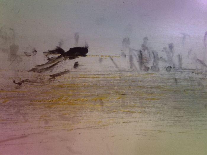 Bird Water Flood Animal Themes