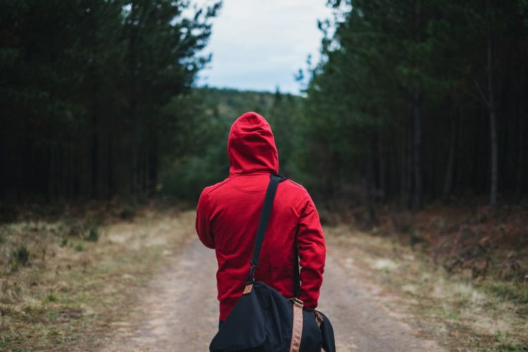 Rear View Of Person In Hooded Shirt Walking With Bag In Belanglo State Forest