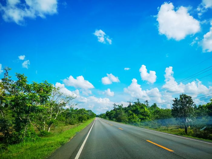 Road amidst plants against blue sky