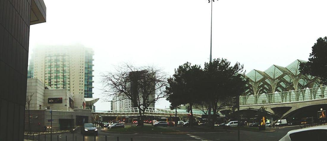 Foggy Morning Parque Das Nações Panorama
