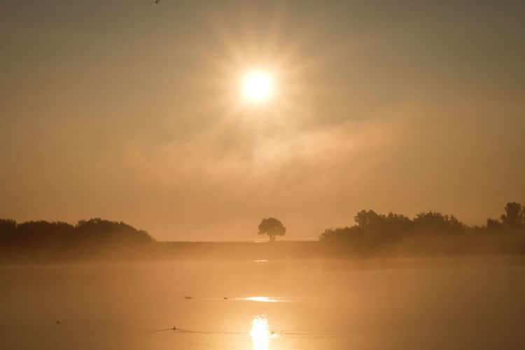 Beauty In Nature Day Fog Friesland Idyllic Lake Landscape Nature Netherlands No People Orange Sky Outdoors Reflection Scenics Sky Sun Sun Star Sunrise Sunset Tranquil Scene Tranquility Tree Tree Water