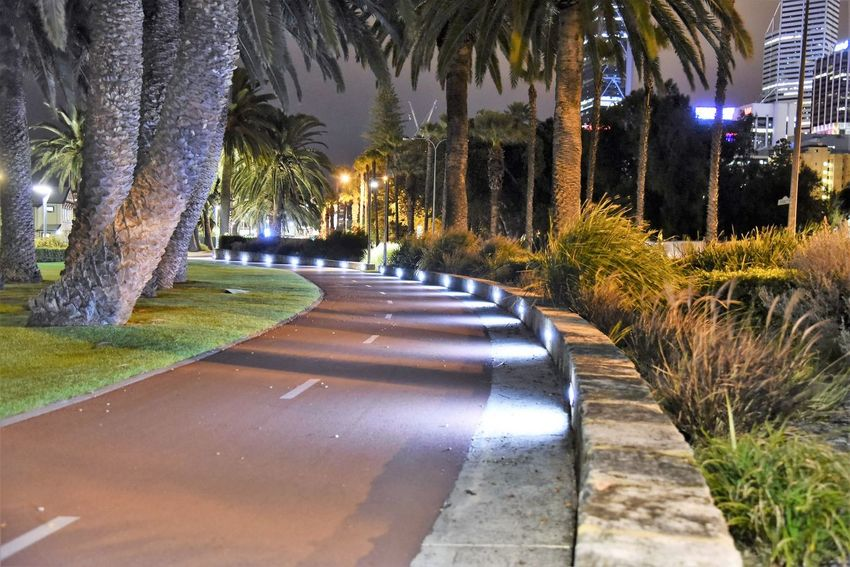 City night walkabout Tree Outdoors Nature Tree Trunk Beauty In Nature Illuminated Taking Photos Enjoying Life Relaxing