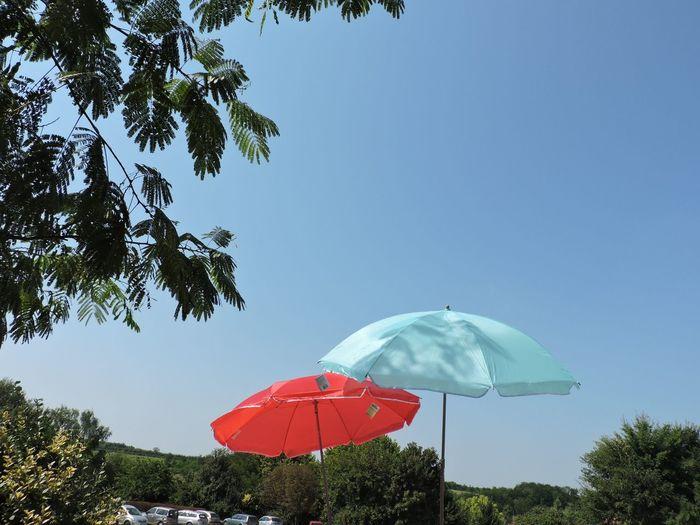 Red And Blue Sky Umbrella☂☂ Umbrellas Umbrellas In The Sky Umbrrella Umbrellas Act Decorations Umbre Tree City Red Clear Sky Sky