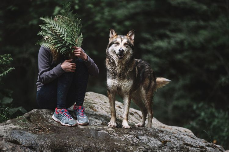 Friends Green Color Looking At Camera Malamute Day Domestic Animals Fern Friendship Front View Full Length Holding Leaf Leisure Activity Lifestyles Mammal Nature One Animal Outdoors People Plant Real People Rock Standing Tree Vertebrate The Portraitist - 2018 EyeEm Awards The Creative - 2018 EyeEm Awards The Great Outdoors - 2018 EyeEm Awards