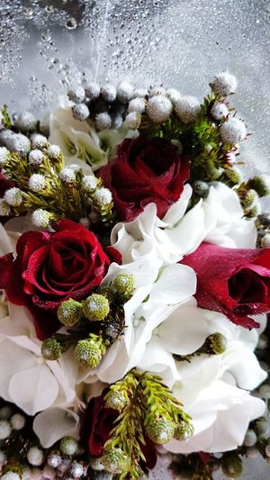 My DIY bouquet Red No People Nature Indoors  Bouquet Close-up Beauty In Nature Fragility Day Freshness Roses Hydrengea White Flowers Flowerphotography Waterdew Tortum Male Red Roses White Hydrangea