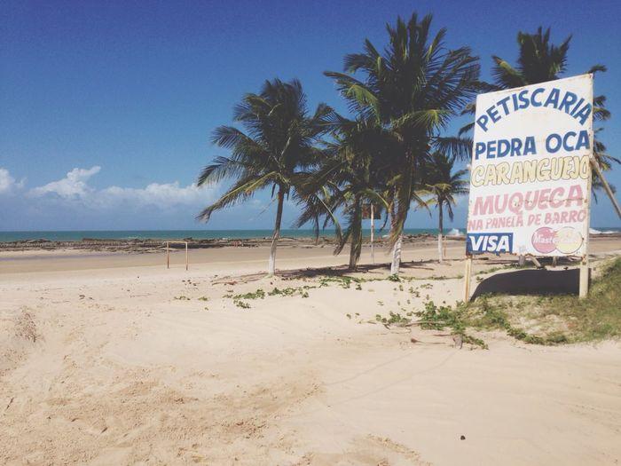 Brazill Coast