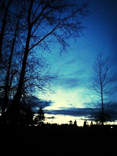 Night Time Walks!