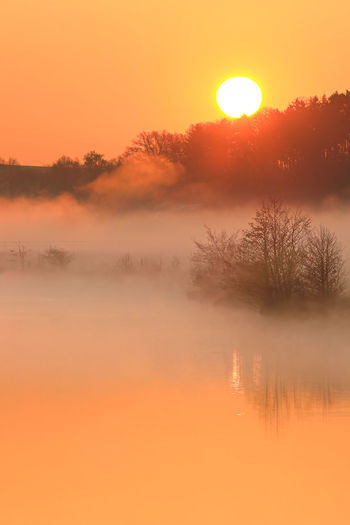 Gently sunset Ruhr  Beauty In Nature Fog Gently. Hazy  Idyllic Nature No People Non-urban Scene Orange Color Outdoors Plant Reflection River Scenics - Nature Sky Sun Sunset Tranquil Scene Tranquility Tree Water