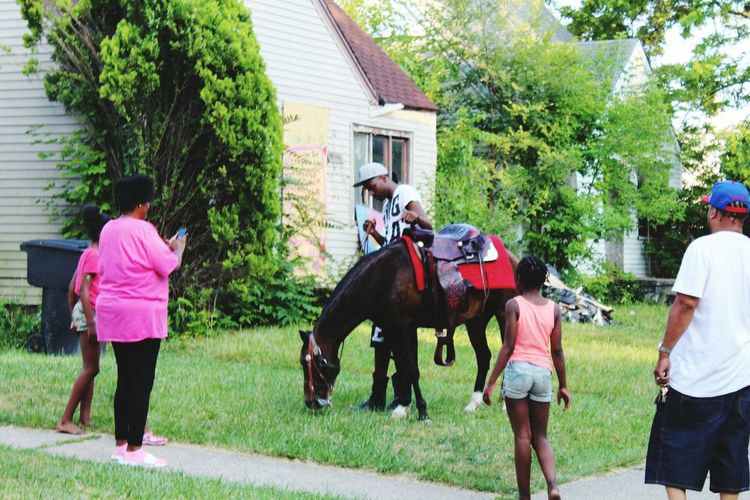 Not an expected sight. A pleasant surprise. Better than the oppossums, deer, raccoons, and mice. Where else in the city would you come out of your house and see a horse. Adventure Club Horse Riding Only In DetroitHorse Canon Photography Vacantplaces Abandoned Places African American Man African American Woman African American Urban Landscape Urban Art People Together People Of EyeEm Colour Of Life