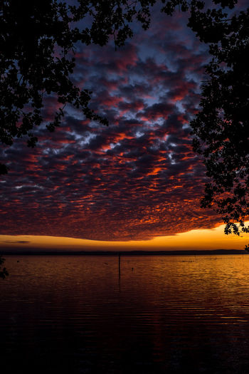 sunset Beauty In Nature Cloud - Sky Horizon Horizon Over Water Idyllic Nature No People Orange Color Outdoors Plant Reflection Scenics - Nature Sea Sky Sunset Tranquil Scene Tranquility Tree Water