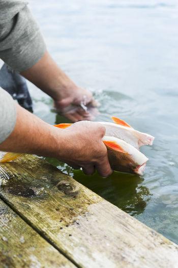 Man holding fish in sea