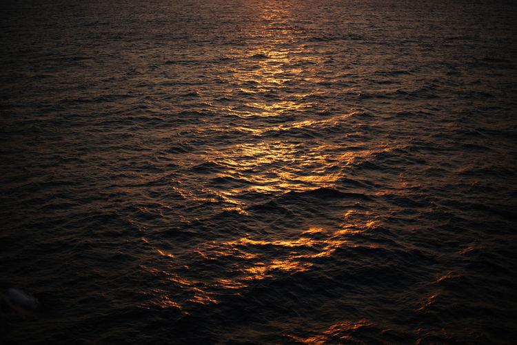 Sunset Cape Town South Africa Sea Star In Hand Sea Star Starfish  Sun Ocean Photography Ocean Sunset  Beautiful EyeEm Best Shots EyeEmNewHere EyeEm Nature Lover EyeEm Selects Orange Orange Color Orange Sky Table Mountain Do Not Tamp