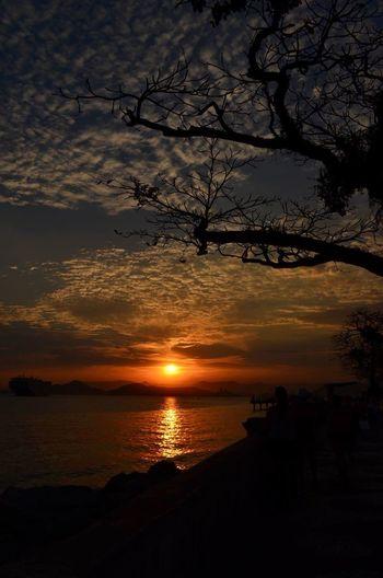 sunsetttn Sunset Nofilter Nikon Brazil