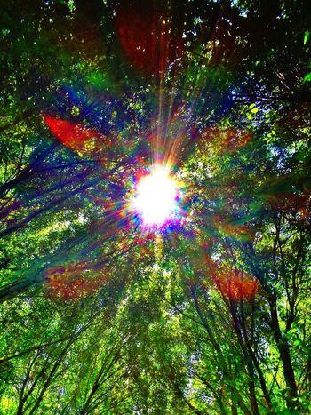 Enjoying The Sun Top Of The World EyeEm Nature Lover EyeEm Best Shots