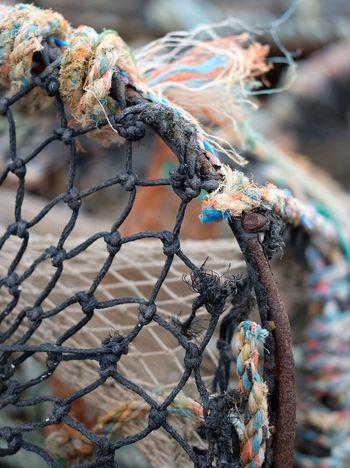 Lobsterpot Pittenweem Harbourside Depth Of Field Rope Net Fishing Fife  East Neuk Scotland Harbour