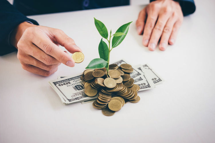 Close-up of businessman holding coin with plant growing amidst currency