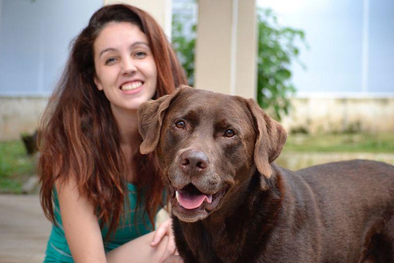 Smile !! Smile Perfect Dog Dog Eternal Love Labrador Retriever Labrador Pets Domestic Animals Animal Themes Domestic Dog Canine Smiling One Animal Animal Portrait Happiness Real People