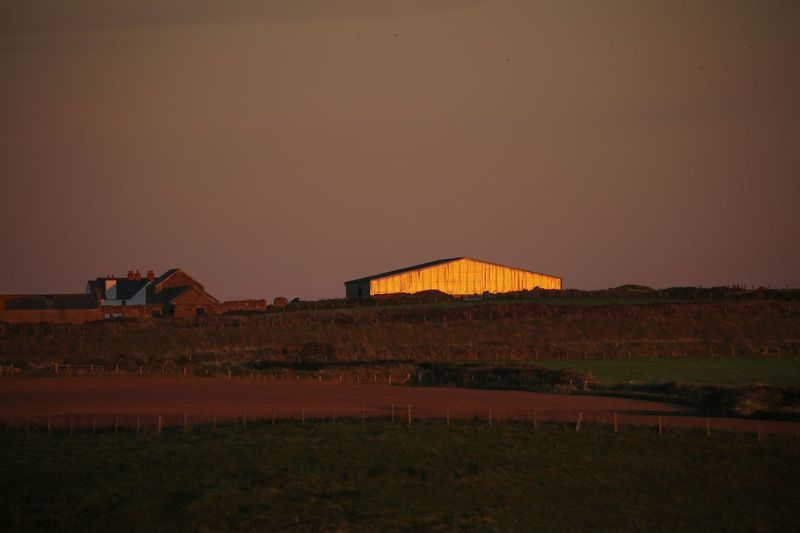 Evening light reflected on barn. Barn Metal Architecture Building Exterior Built Structure Sky Nature Land Landscape No People Outdoors Environment Field Rural Scene Sunset Clear Sky Building