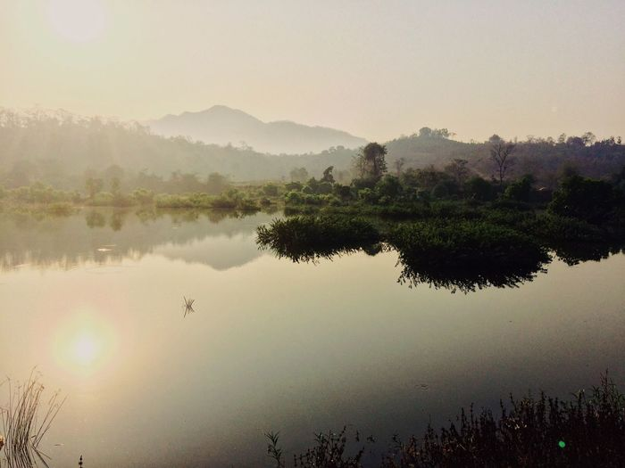 Reflection Nature Tree Water Lake Beauty In Nature Tranquility Outdoors No People Tranquil Scene Scenics Sky Sunset Growth Forest Landscape Animal Themes Day Mountain VSCO EyeEmNewHere EyeEm Best Shots EyeEm Best Edits